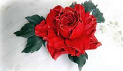 роза красн2