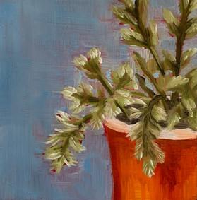 Tiny Plant in the Orange Pot