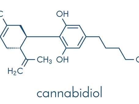 The Various Medicinal Uses of CBD
