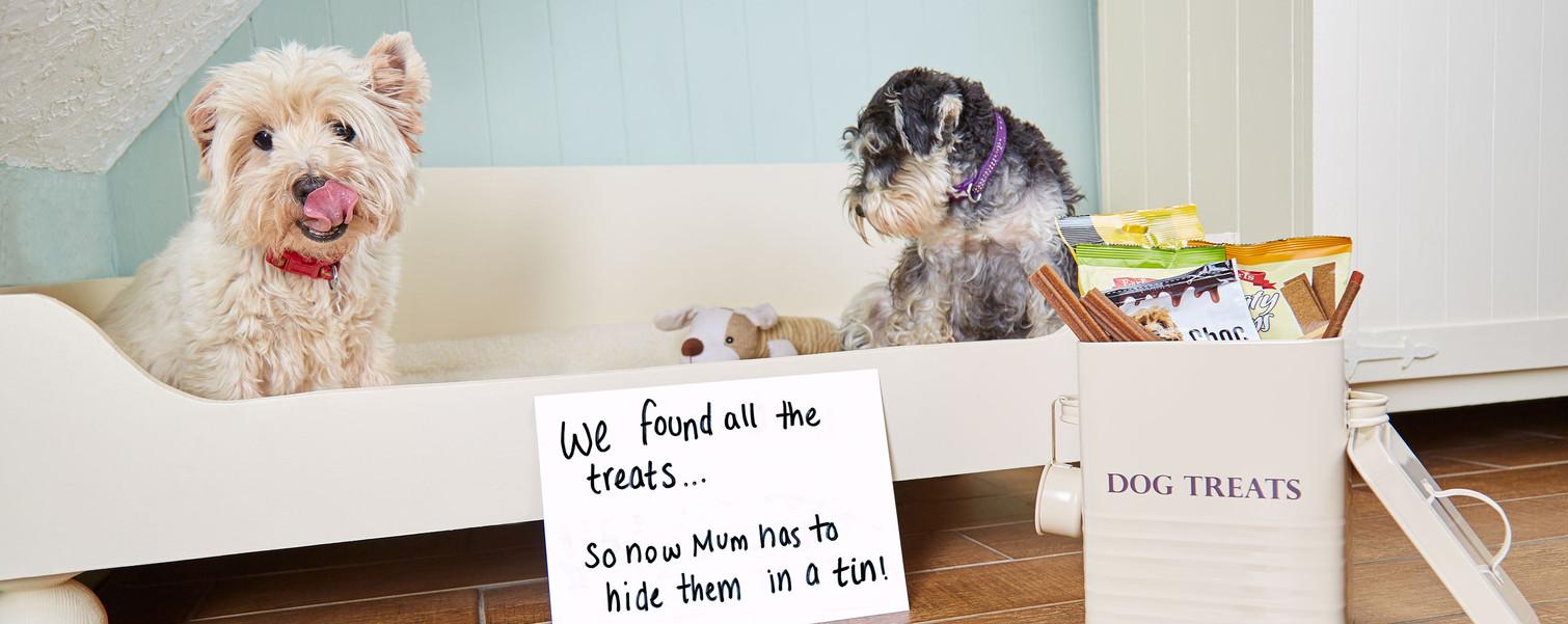 Dog-Food-Tin-Cream -6.jpg