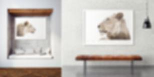 spirit-collection-portrait-wildlife-sall