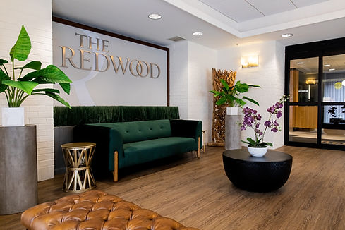Redwood_2020-01-28_TSUCALAS_7312.jpg
