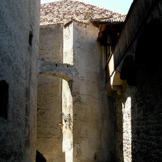 15th century wing