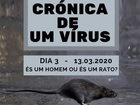Crónicas de um vírus - Dia 3 / 13.03.2020: És um homem ou és um rato?