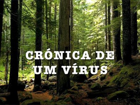 Crónica de um vírus - Dia 23: Vales Ouro