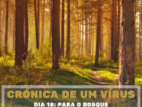 Crónica de um vírus - Dia 18: Para o bosque