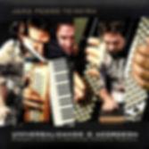 Universalizando o acordeon.jpg