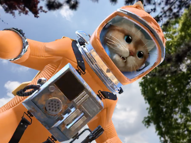 AR Space Cats