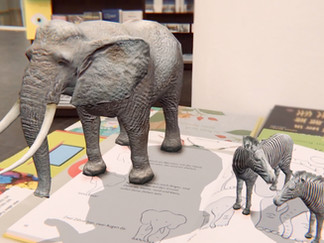 Drawing Book Zoo / AR