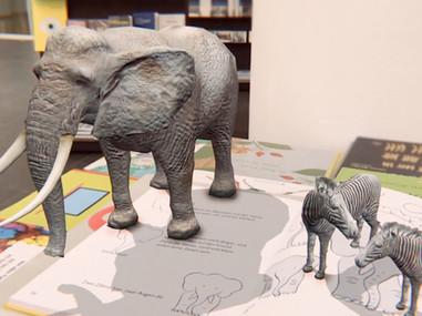 Drawing Book Zoo / AR