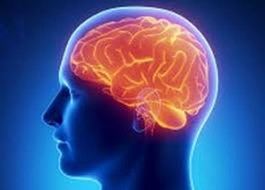 Medi-Park Neurology