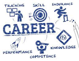 WORK PLACEMENTS & CAREER ADVICE