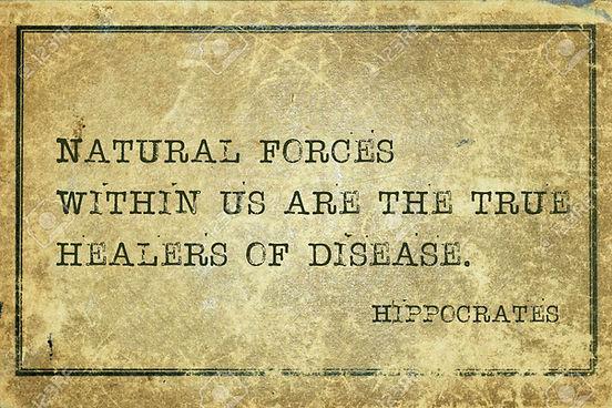 hippocrates quote.jpg