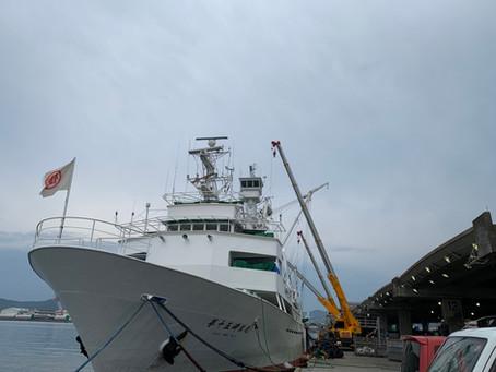 枕崎港にて第15岬洋丸が水揚げを行っています。