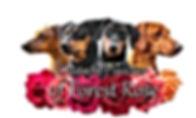 Logo mit Conner.jpg