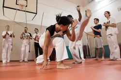 Berinjela Capoeira Energia Pura BZ