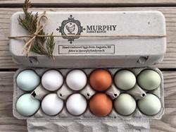 Hand Gathered Eggs