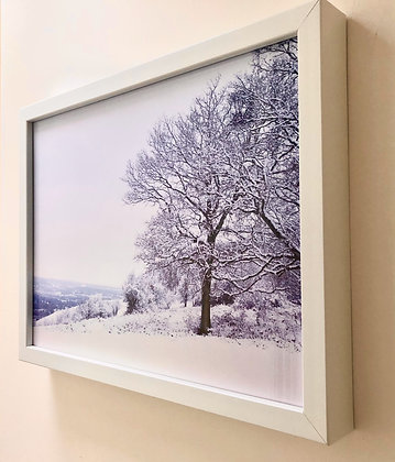 Reigate Hill Snow by Jenny Frear