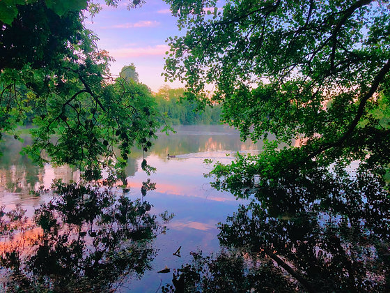 Priory Park Lake In Spring by Jenny Frear