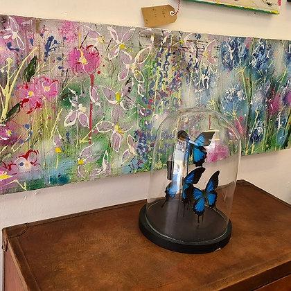 """Summer Border"" by Julia Adams"