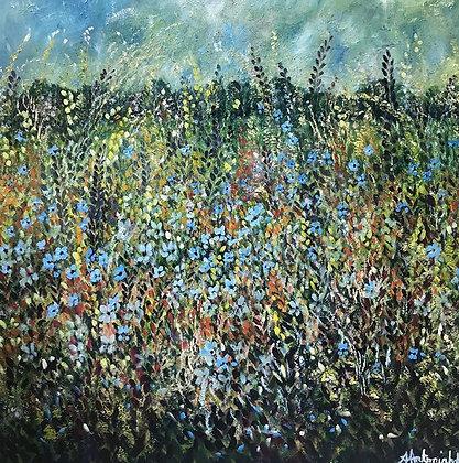 Wild Flower Meadow by Amie Antoniak
