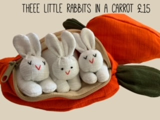 Bunnies in a Carrot by Susie Cooper Kids
