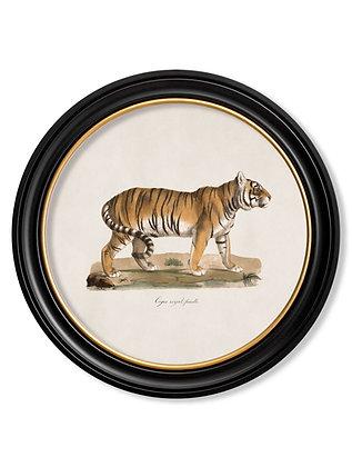 Small Round Art Tiger
