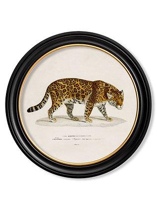 Medium Jaguar Round Art