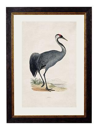 Crane Rectangle Black Art