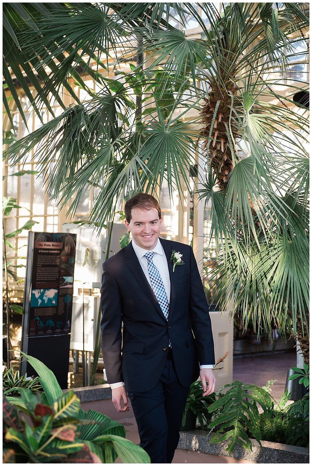 groom palm house