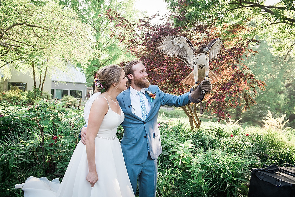wedding couple with red tailed hawk, historic london town and gardens