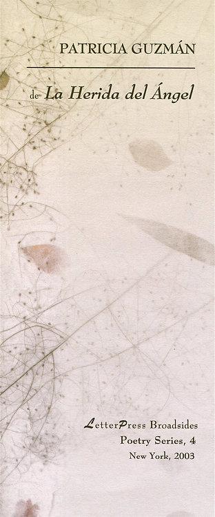La Herida del Ángel, de Patricia Guzmán