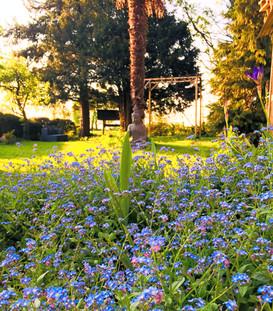 jardin_zen.jpg