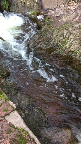 Février c'est le mois des fontaines et rivières de la forêt de Brocéliande...