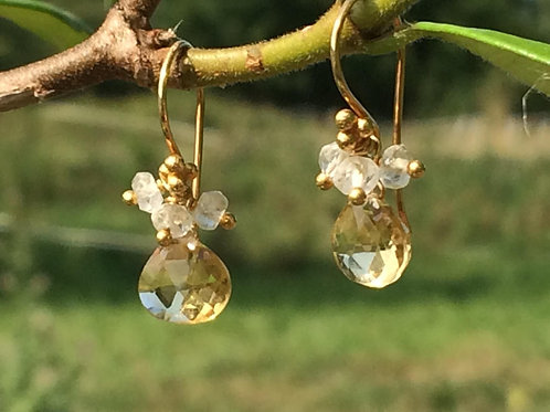 Beautiful Citrine Earrings with White Topaz