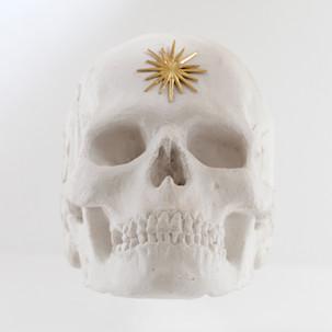 Skull  Plaster cast 25x22x16cm 2015