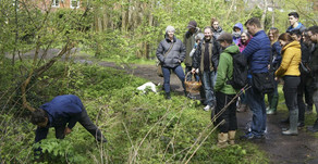 Totally Wild: James Wood's Foraging Revolution