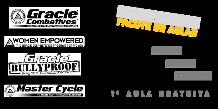 Pacotes AP.png