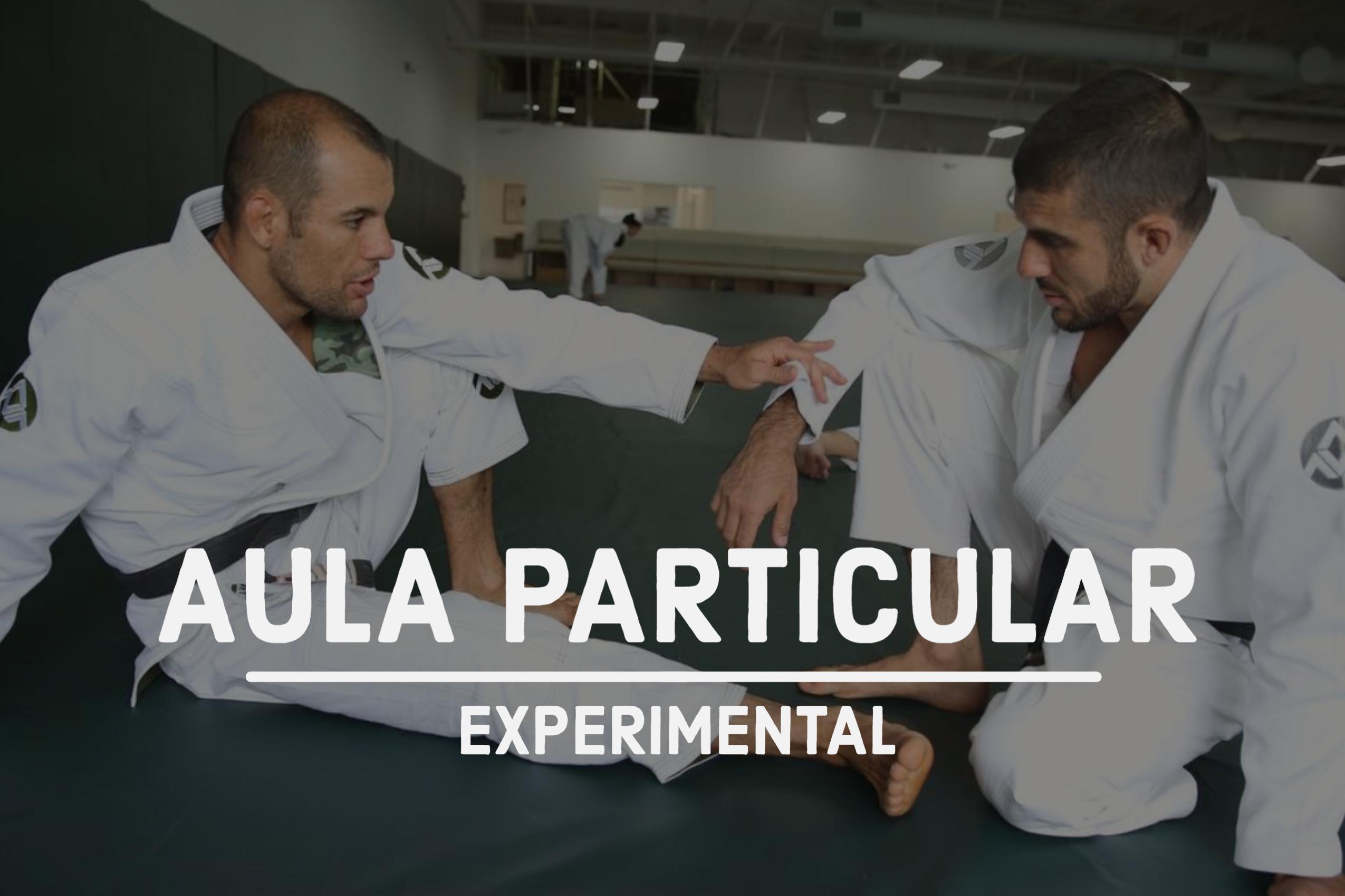 Aula Particular (Experimental)