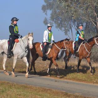 Team Castlebar in the 80km event