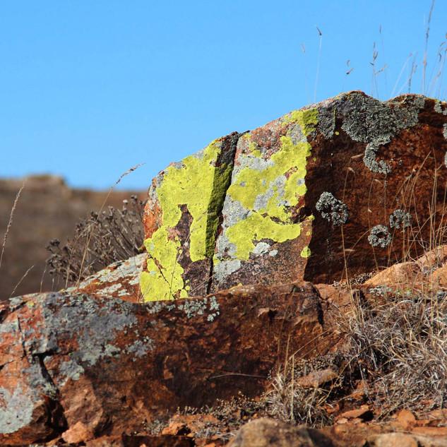 Wichita Mountains Wildlife Refuge, Oklahoma, US