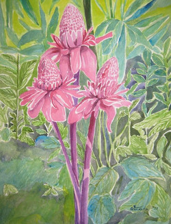 Ginger Lilies 2