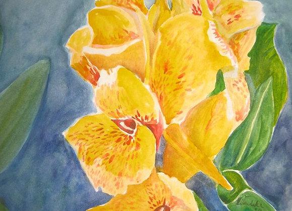 Canna Lilies (FRAMED)