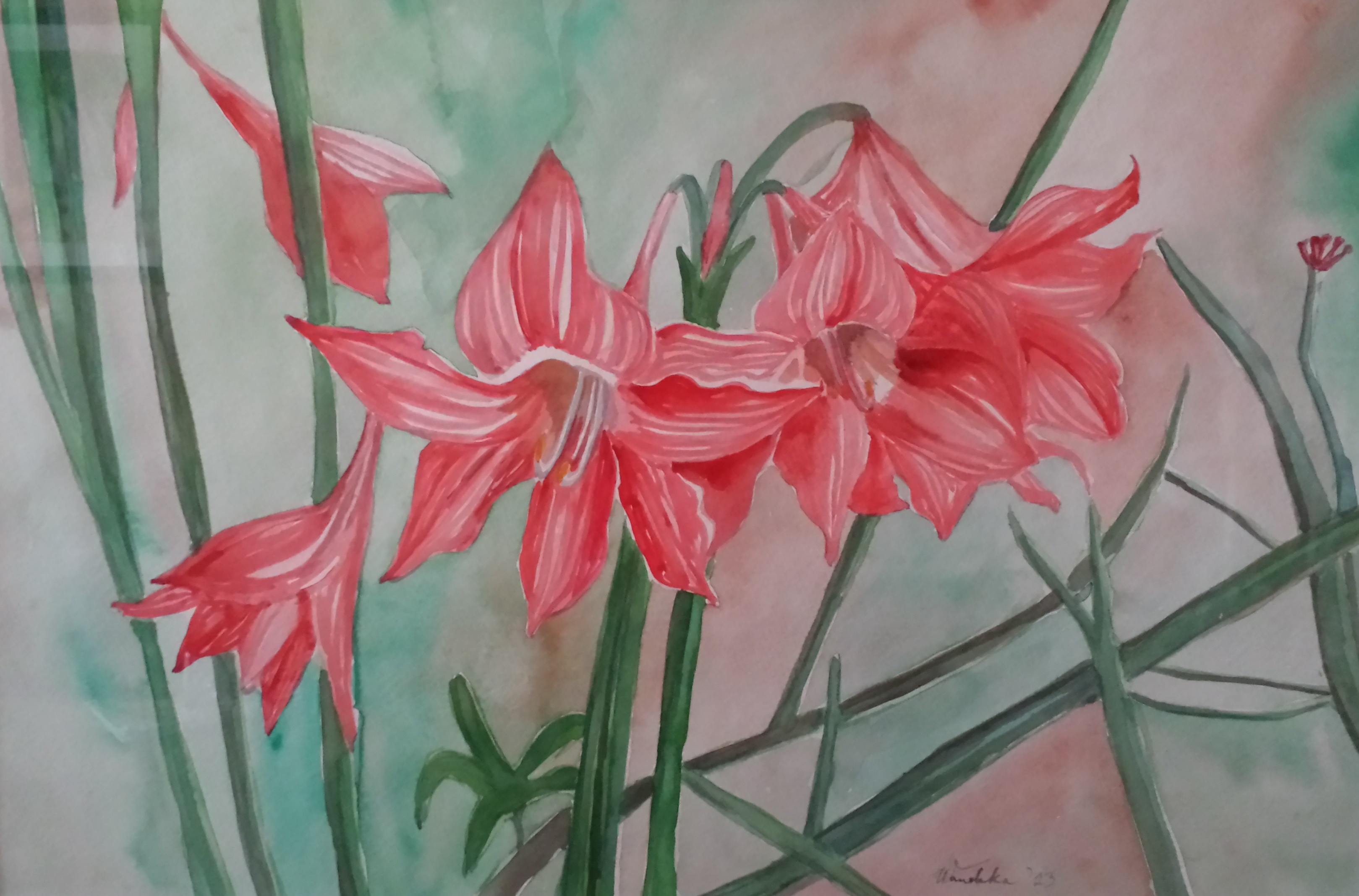 Easter Lilies 2