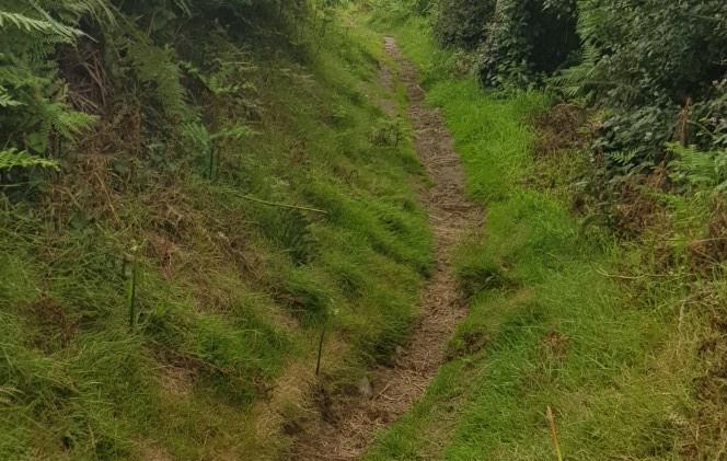 Trinity Trail (04).jpg