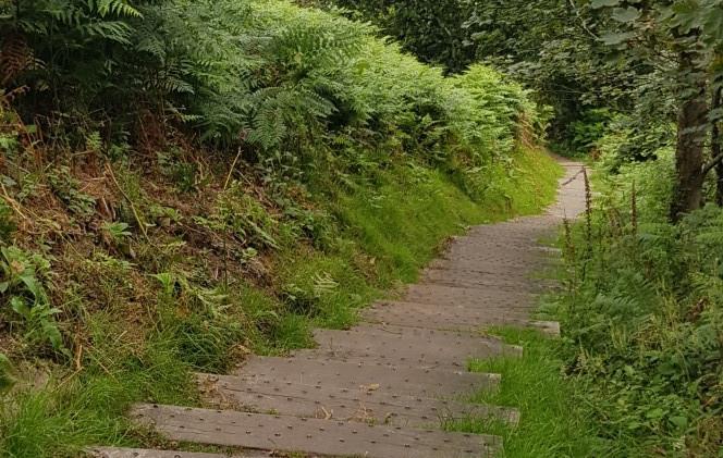 Trinity Trail (06).jpg