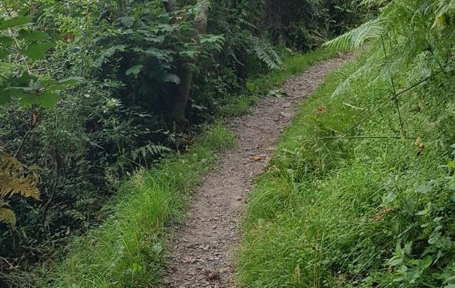 Trinity Trail (33).jpg