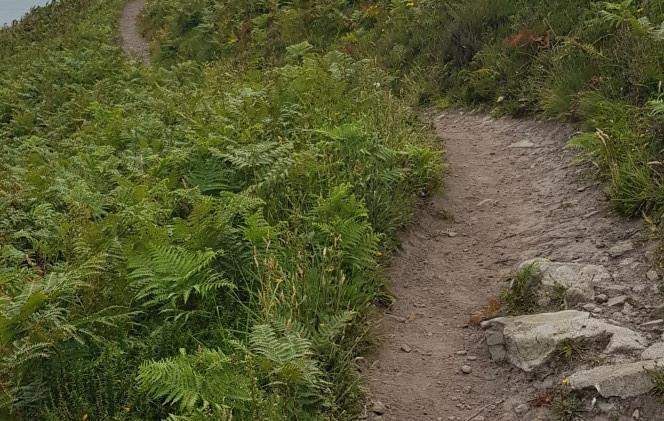 Trinity Trail (30).jpg