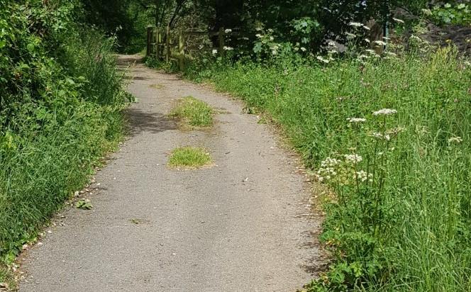 St Lawrence Loop (13).jpg