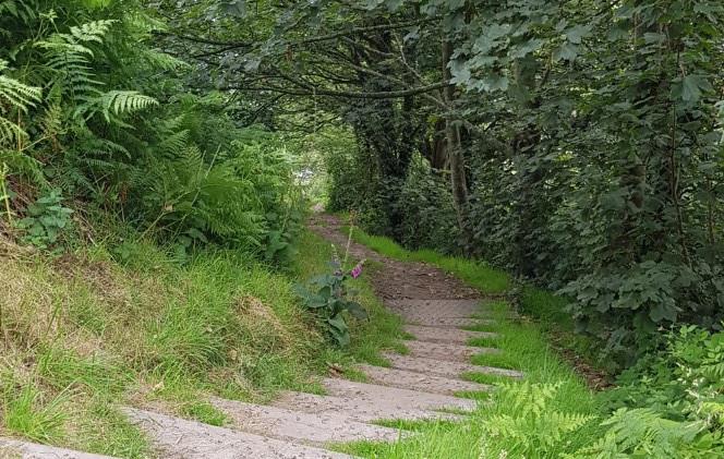 Trinity Trail (05).jpg
